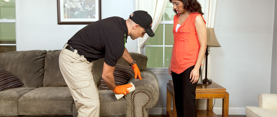 Irvington, OR carpet upholstery cleaning